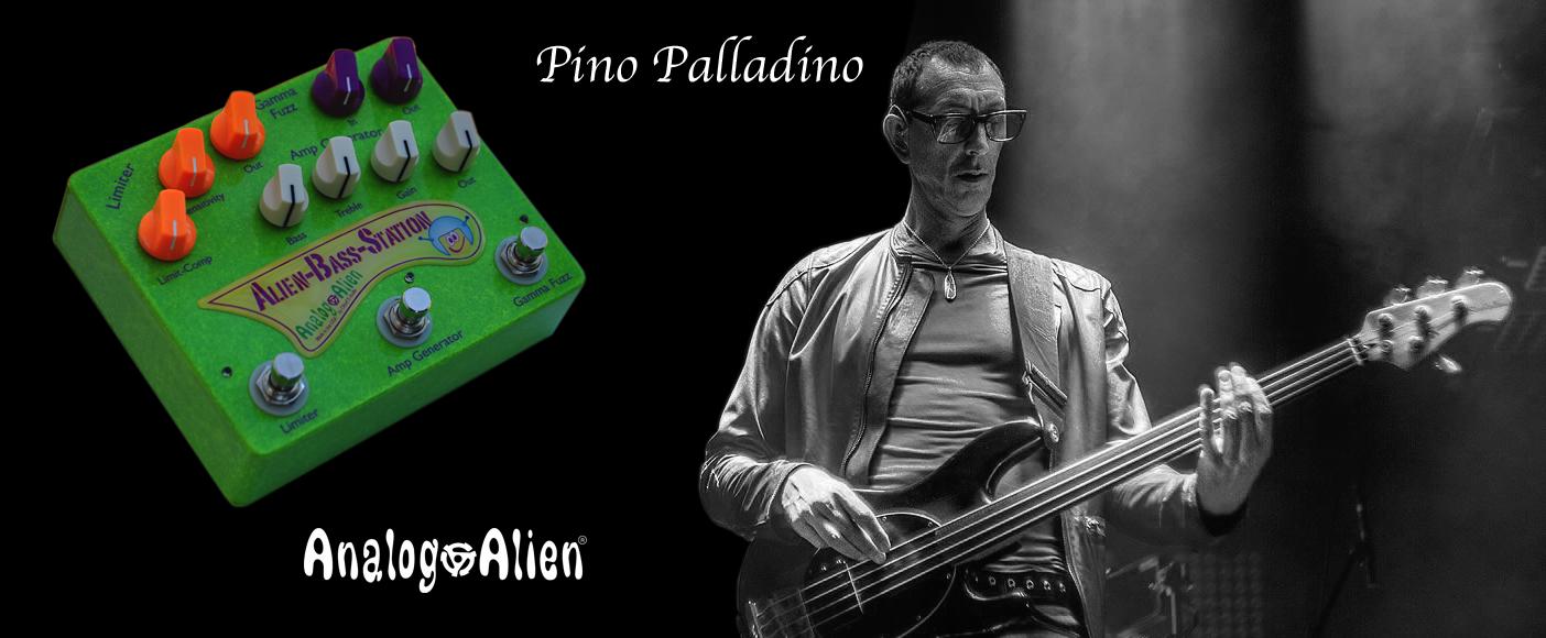 Website slide Pino